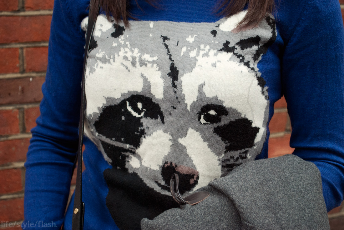 H&M raccoon jumper