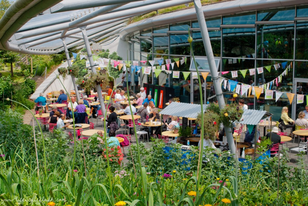 Cornwall: Eden Project cafe