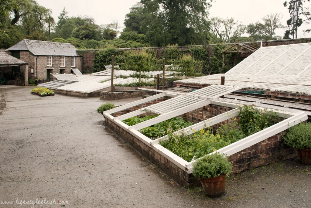 Lost Gardens of Heligan: melon garden
