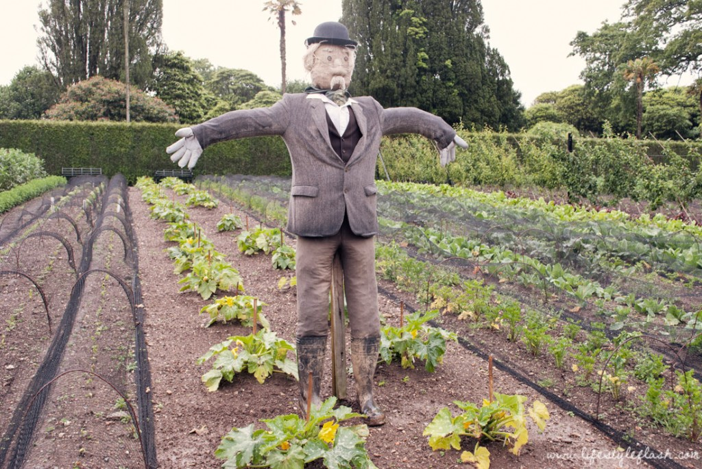 Lost Gardens of Heligan: scarecrow