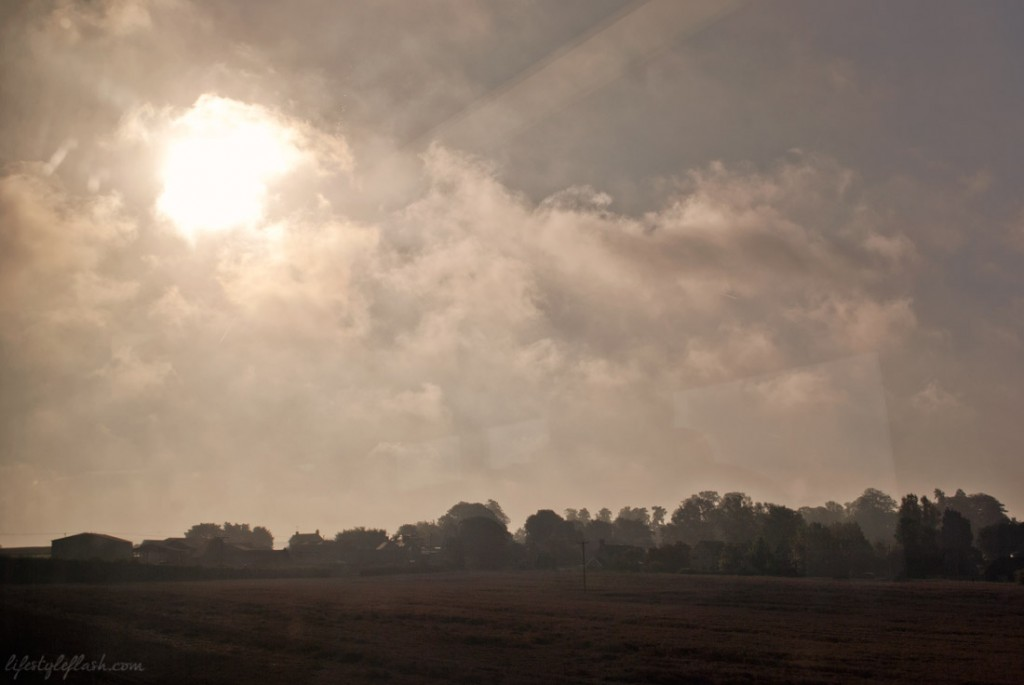 Early morning countryside view from the train