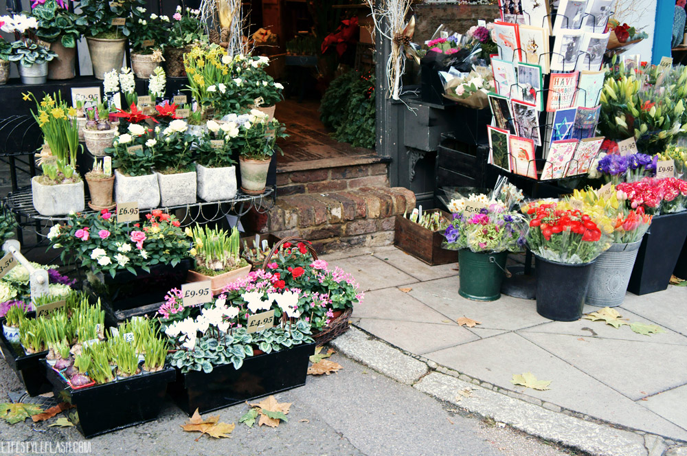 Fitzroy's Florist, Primrose Hill, London