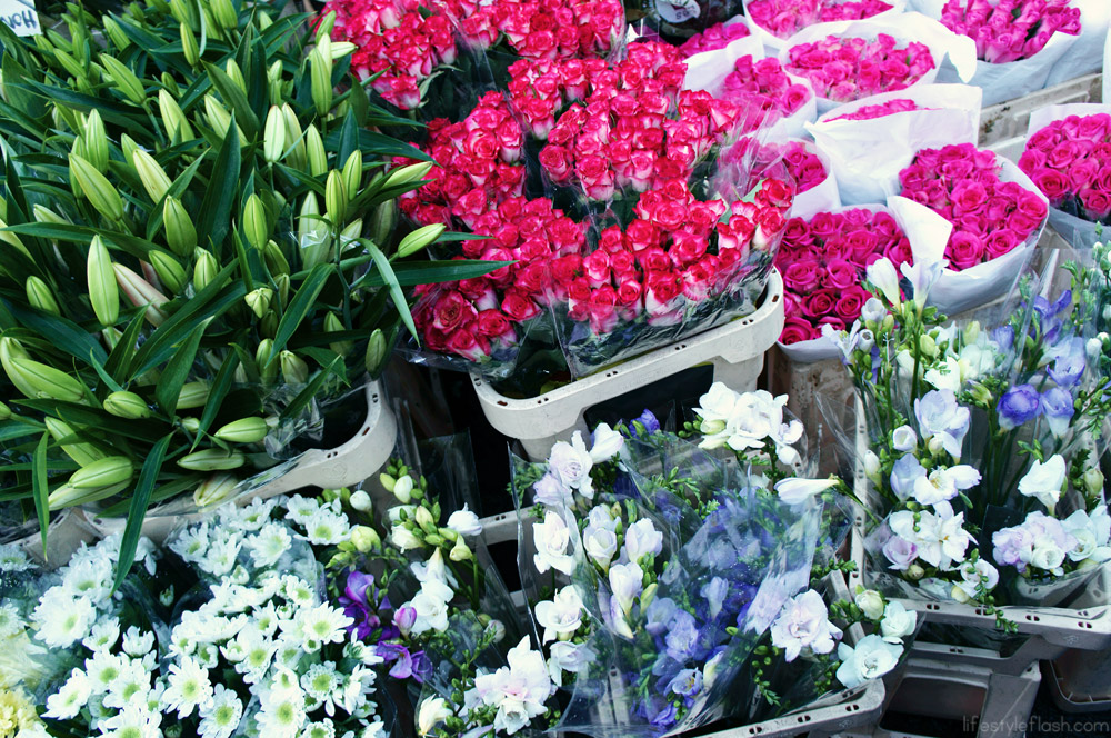 Flower stalls at Columbia Road Flower Market, London