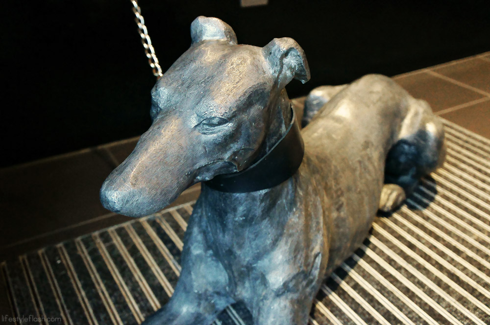 Dog statue at the Hoxton Hotel, London